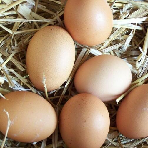 Яйцо куриное фабрики Кукареку, С1, уп. 10 шт