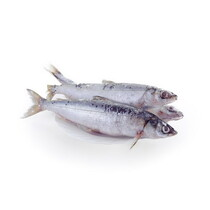 Северная якутская рыба Омуль свежемороженый