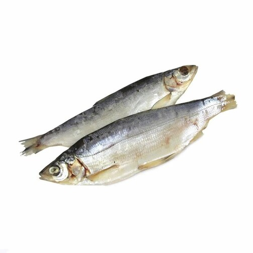 Северная якутская рыба Пелядь свежемороженая  (арт. СФИ)