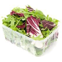 Смесь салатов (руккола+радичио)