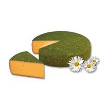 Сыр Швейцарские Альпы в травах